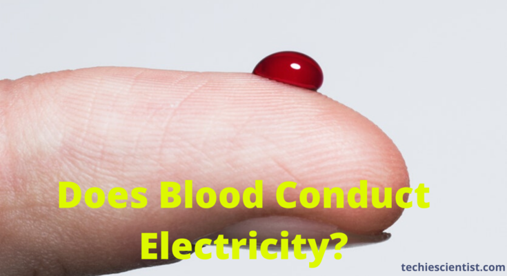 Does Blood Conduct Electricity