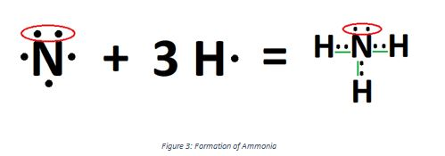 Ammonia formation