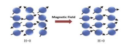 magnetic dipole configuration of paramagnetic