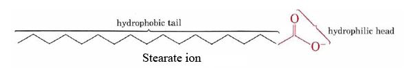Stearate ion