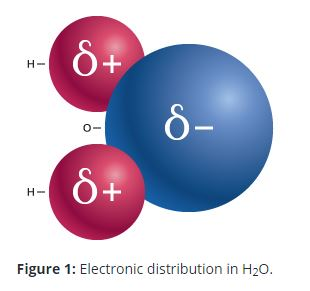 h2o electronic distribution