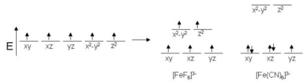 magnetic field of FeF6