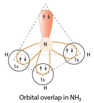 NH3 hybridisation