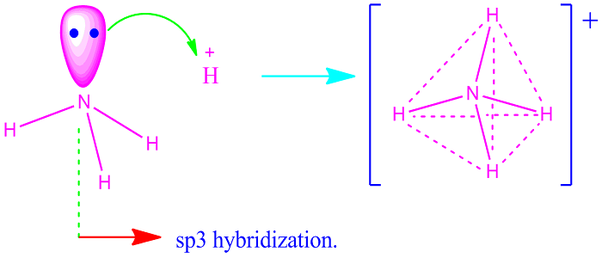 NH4 hybridization