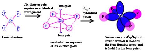xef4 hybridization