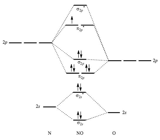 NO MO Diagram