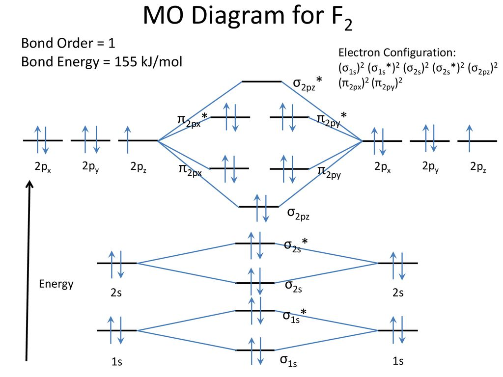 F2 MO Diagram