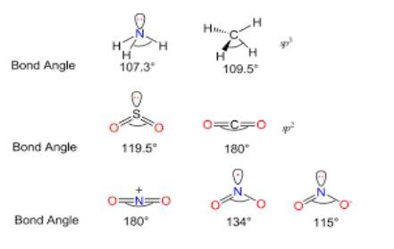 NO2 bond angle