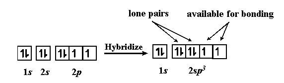 SF2 hybridization