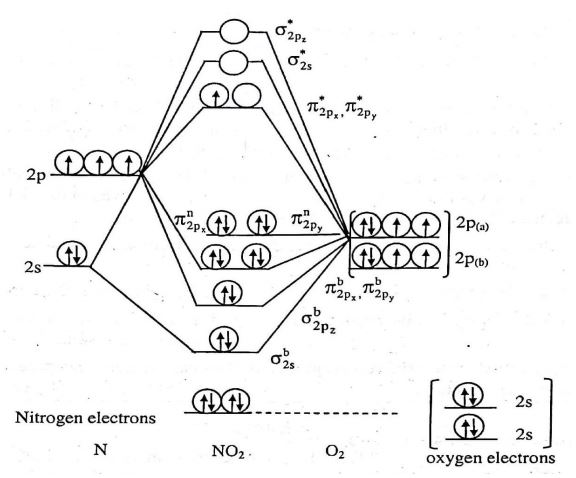 NO2 MO Diagram