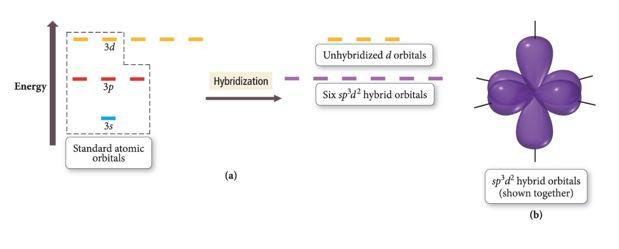 ClF5 hybridization