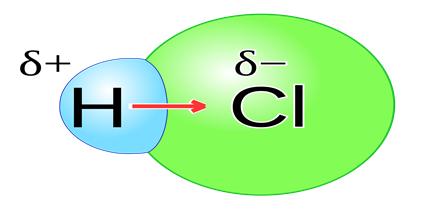 HCl bond
