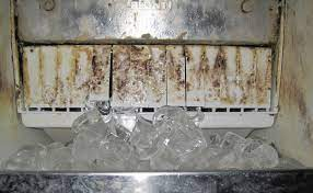 Contaminated Ice Makers