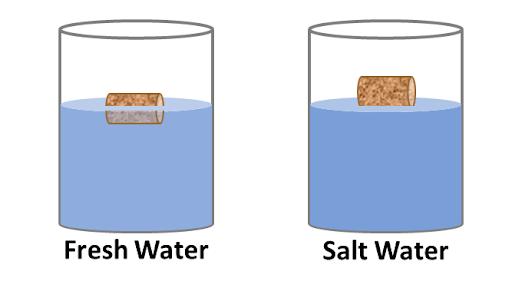 Fresh water vs salt water density