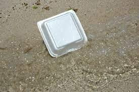 Styrofoam non-biodegradable