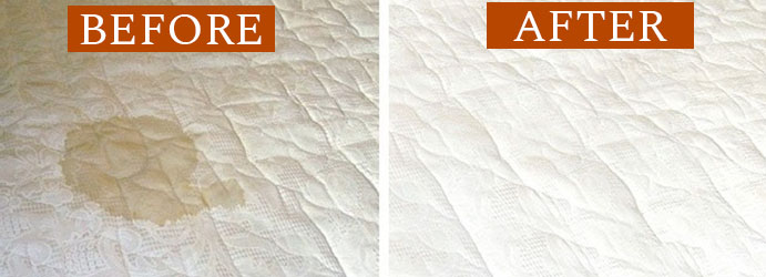before and after urine on mattress