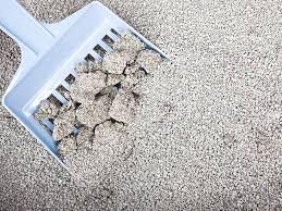 Biodegradable cat litter