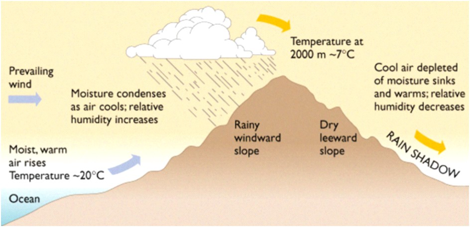 Humidity and Rainfall