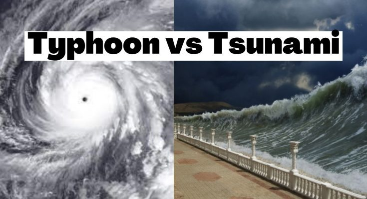Tsunami vs Typhoon