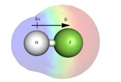 HF Polarity